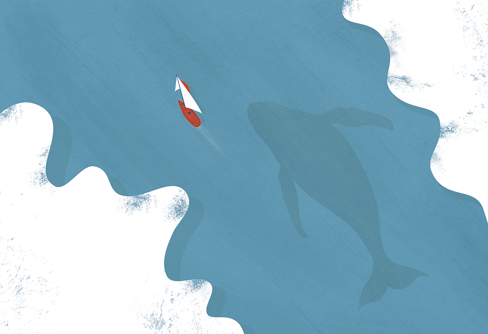 Over sea save whales