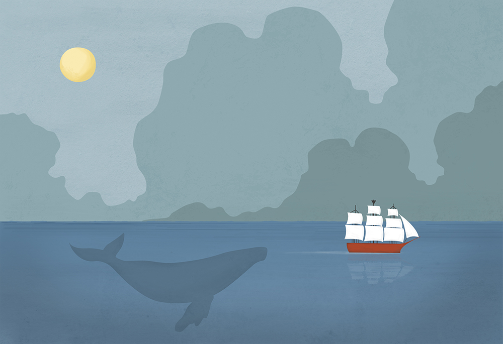 Sea stories Save whale
