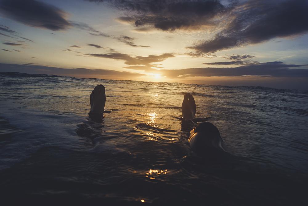 sunset light water